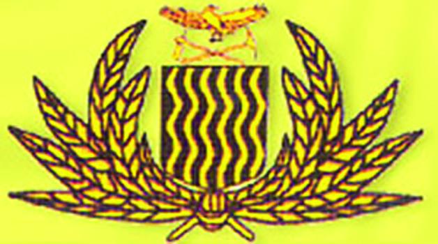 Immigration logo 628 X 350