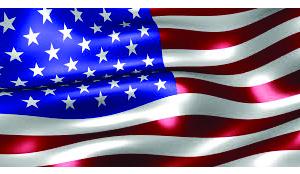 USA Flag 300x174