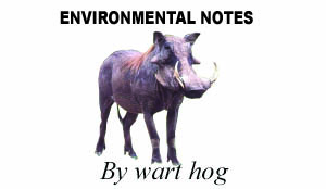 Environmental notes logo