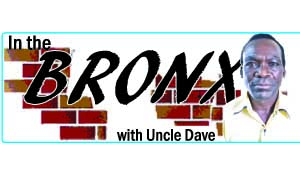 In the bronx logo