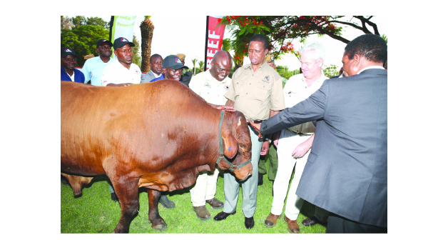 • PRESIDENT Edgar Lungu admires a bull donated to him by ZAMBEEF with company joint chief executive officer Francis Grogan (second right) and Fisheries and Livestock Minister Michael Katambo (right) during the 112th Zambia National Farmers Union annual general congress at the Mulungushi International Conference Centre in Lusaka yesterday. Picture By THOMAS NSAMA/STATE HOUSE