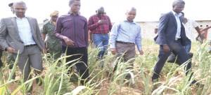 .President Lungu (second left)